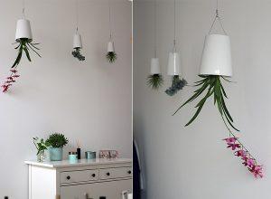Besondere Pflanzen für das Badezimmer